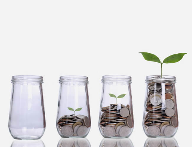 Coins in a small jar with a plant growing